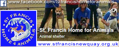 St Francis Home for Animals where Mum and Dad got me