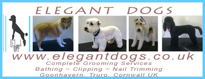 Elegant Dogs - Complete Grooming Services Bathing, Clipping, Nail Trimming, Truro Cornwall UK